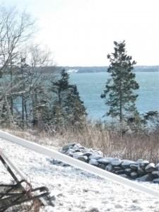 Eagle Island View