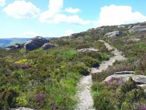 Holy Isle trail