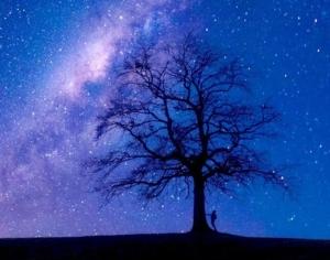 ohannes-Plenio-Night-Skye